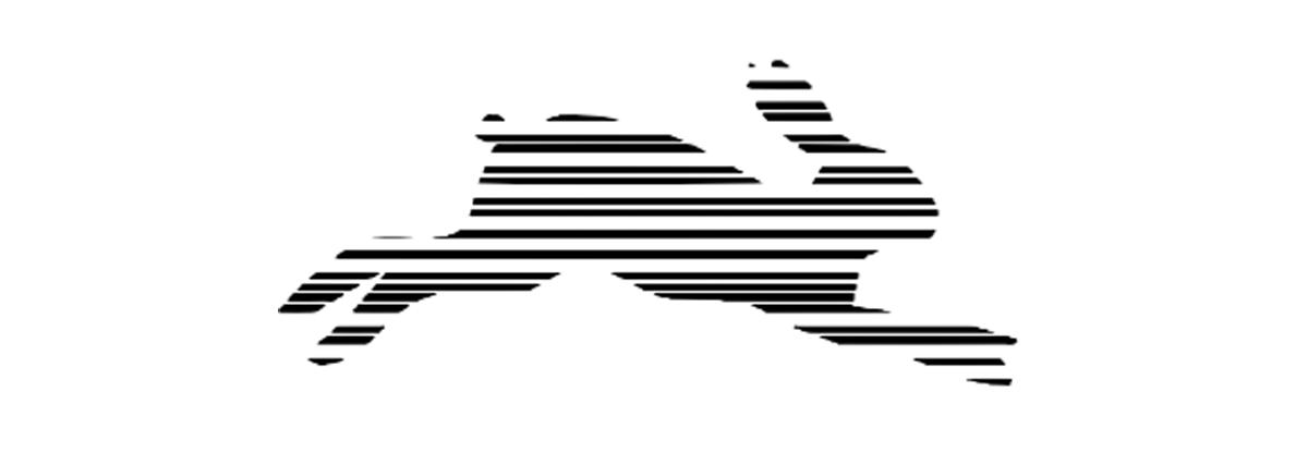 Representação de um coelho com linhas para falar das dificuldades do autista no mercado de trabalho